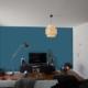 DSCN6551 (2 murs et suspension ikea) 2